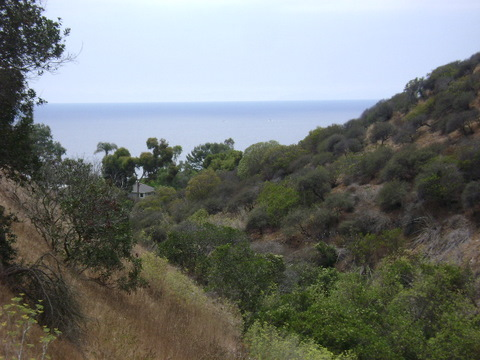View from Valido Hiking Trail in Laguna Beach