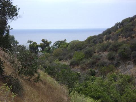 View from Valido Hiking Trail in Laguna Beach
