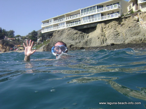 Divers Cove, Laguna Beach beach - Laguna Beach Information, California Beaches