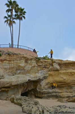Firefighters practicing cliffside rescue