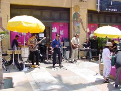 LIBRE- Latin World Fusion Band