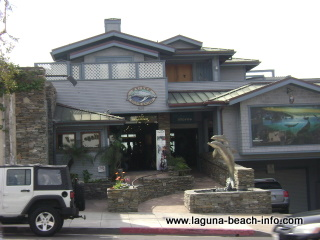wyland marine life artist studio gallery, laguna beach art galleries