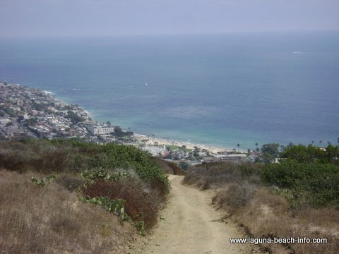 Main Beach from Water Tank Trail: Laguna Beach Hiking Trail