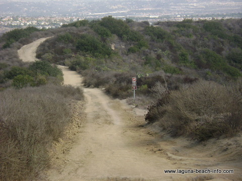 West Ridge Trail in Laguna Beach